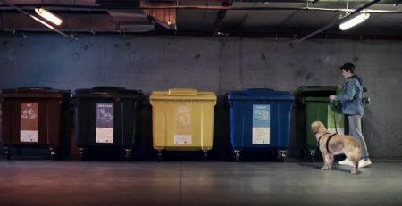 Segregacja odpadów – zmiany w zasadach od 1 stycznia 2020. Źródło: naszesmieci.mos.gov.pl